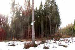 WindparkRaum2b