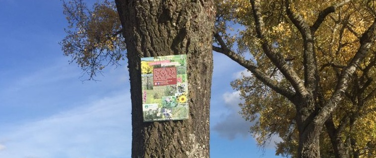 BLHV, Bäume und Wiesenumbruch