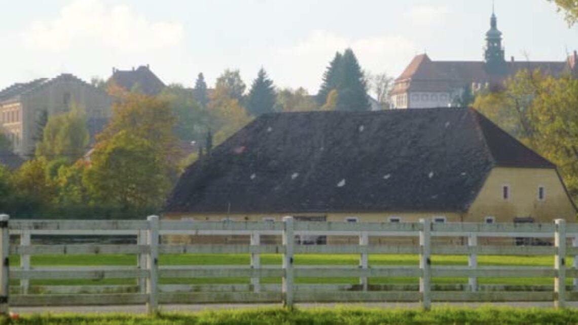 Iisern Schuelwald